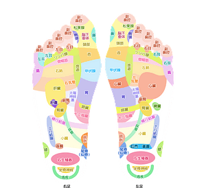 Acupuncture Feet clipart