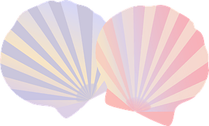 Striped Shells clipart