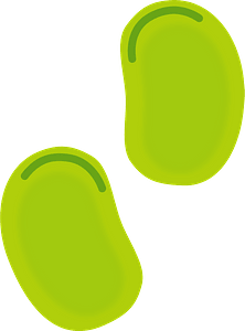 Broad Bean clipart