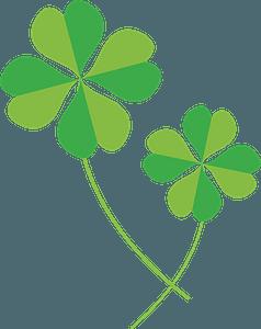 Four Leaf Clover clipart