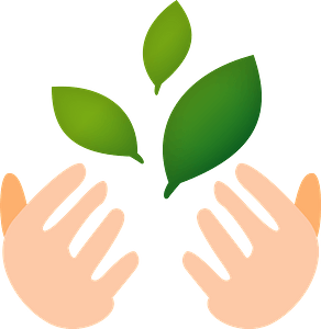 Hands are Holding Green Leaves clipart
