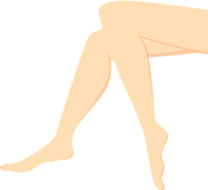 Legs and Feet clipart