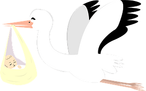Stork is Delivering a Baby clipart