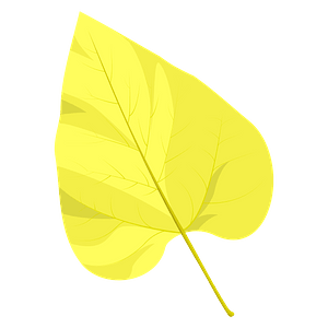 Northern catalpa autumn leaf clipart