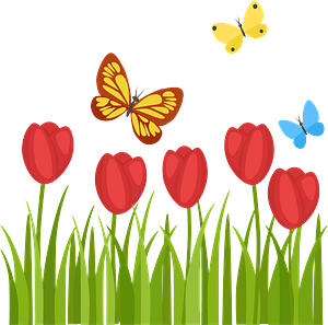 Tulips and Butterflies clipart