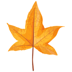 Sweetgum yellow leaf clipart