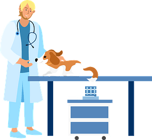Veterinary with a dog clipart