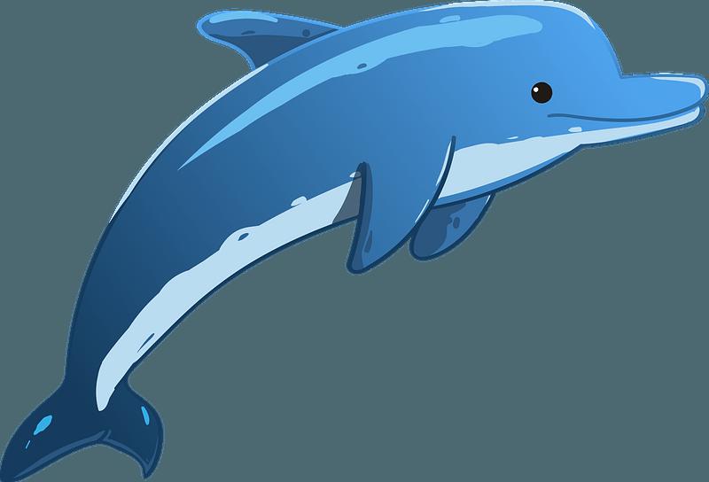 Cartoon Dolphin Clipart Free Download Transparent Png Creazilla