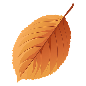 Wild cherry tree autumn leaf clipart
