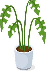 Office plant clipart