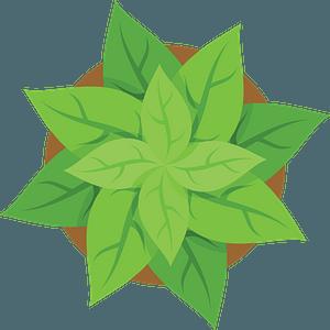 Plant pot top view clipart