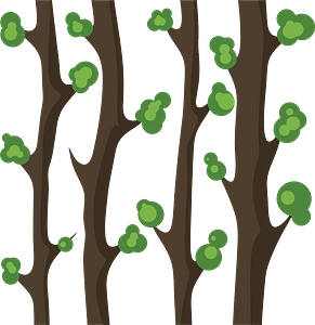 Forest trees clipart