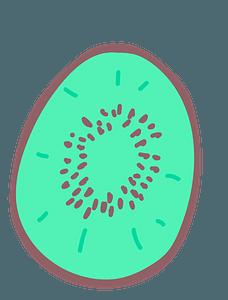 Half kiwi clipart