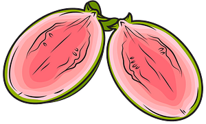 Guava Cut in Half clipart