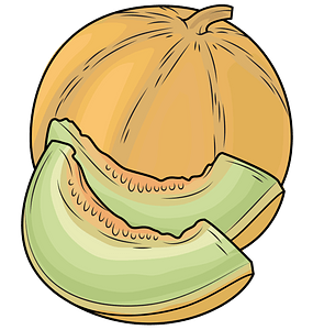 Melons clipart