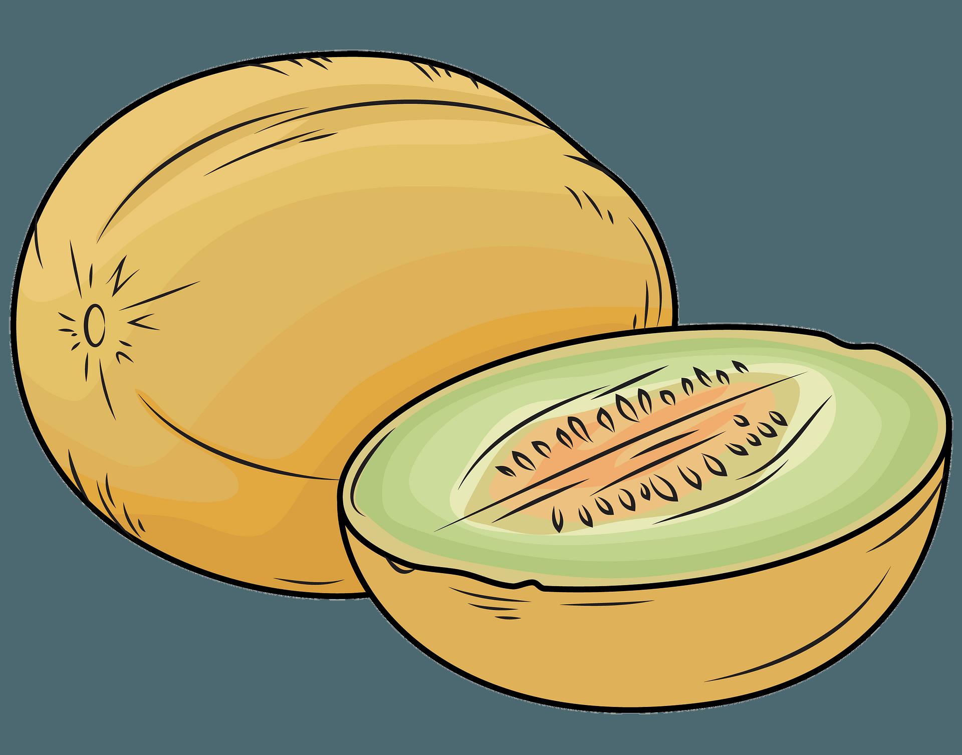 Whole Melon And A Half Clipart Free Download Transparent Png Creazilla