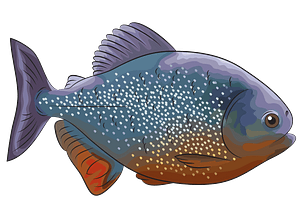 Piranha Rouge clipart