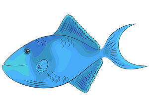 Redtoothed Triggerfish clipart