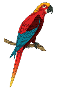 Jamaican Red Macaw clipart