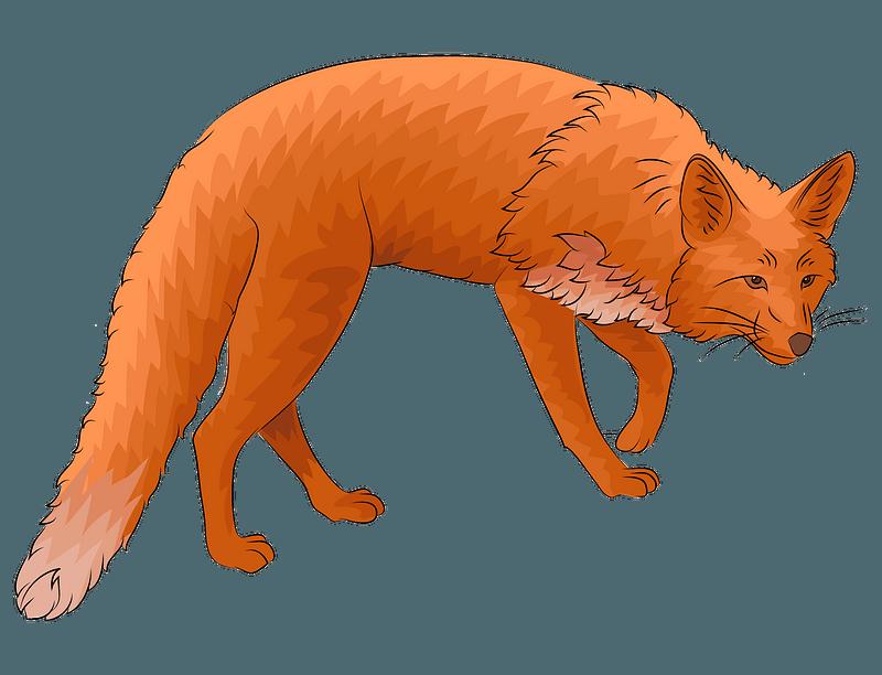 Red Fox Clipart Free Download Transparent Png Creazilla