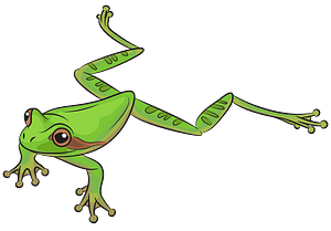 Masked Tree Frog clipart