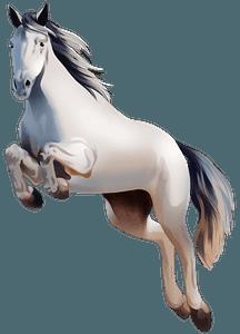 Irish Sport Horse clipart