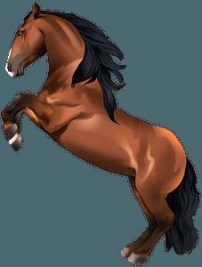 Lusitano horse clipart