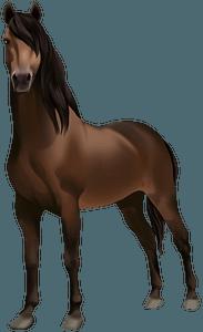 Кінь Морган кліпарт