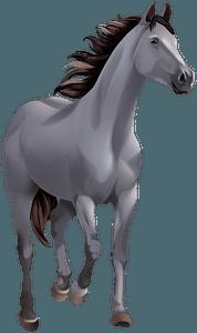 Арабський кінь кліпарт