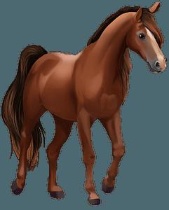 Траканенський кінь кліпарт