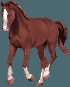 Вестфальський кінь кліпарт