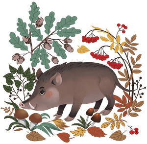 Boar in the forest clipart