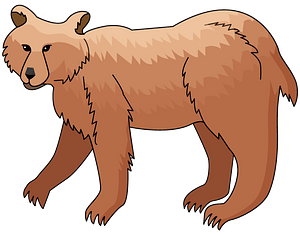 Brown Bear clipart
