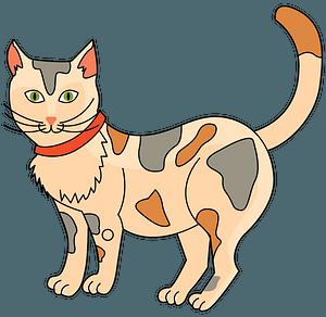 Katze clipart