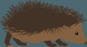 Hedgehog clipart