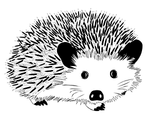 Black and white hedgehog clipart