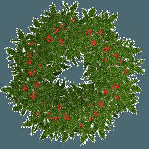 Christmas holly wreath clipart