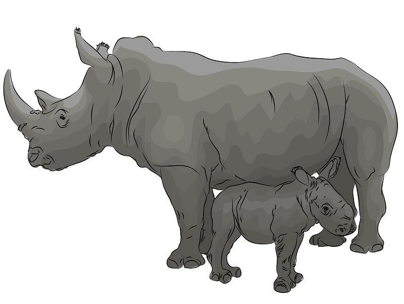 Mother with baby rhino clipart