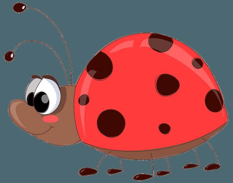 Ladybug Clipart. Free Download Transparent .PNG Creazilla