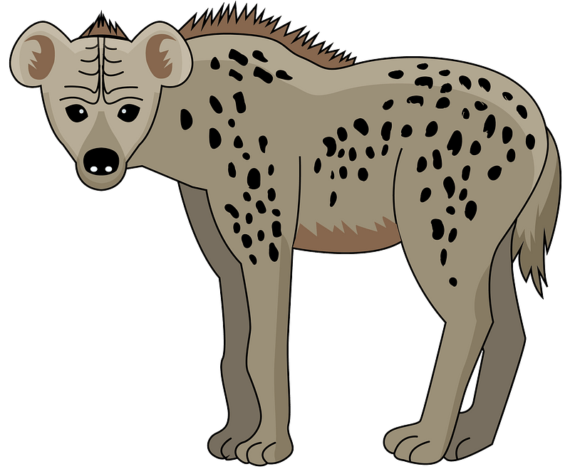 Spotted Hyena clipart