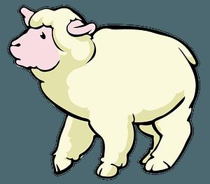 Cartoon Sheep clipart