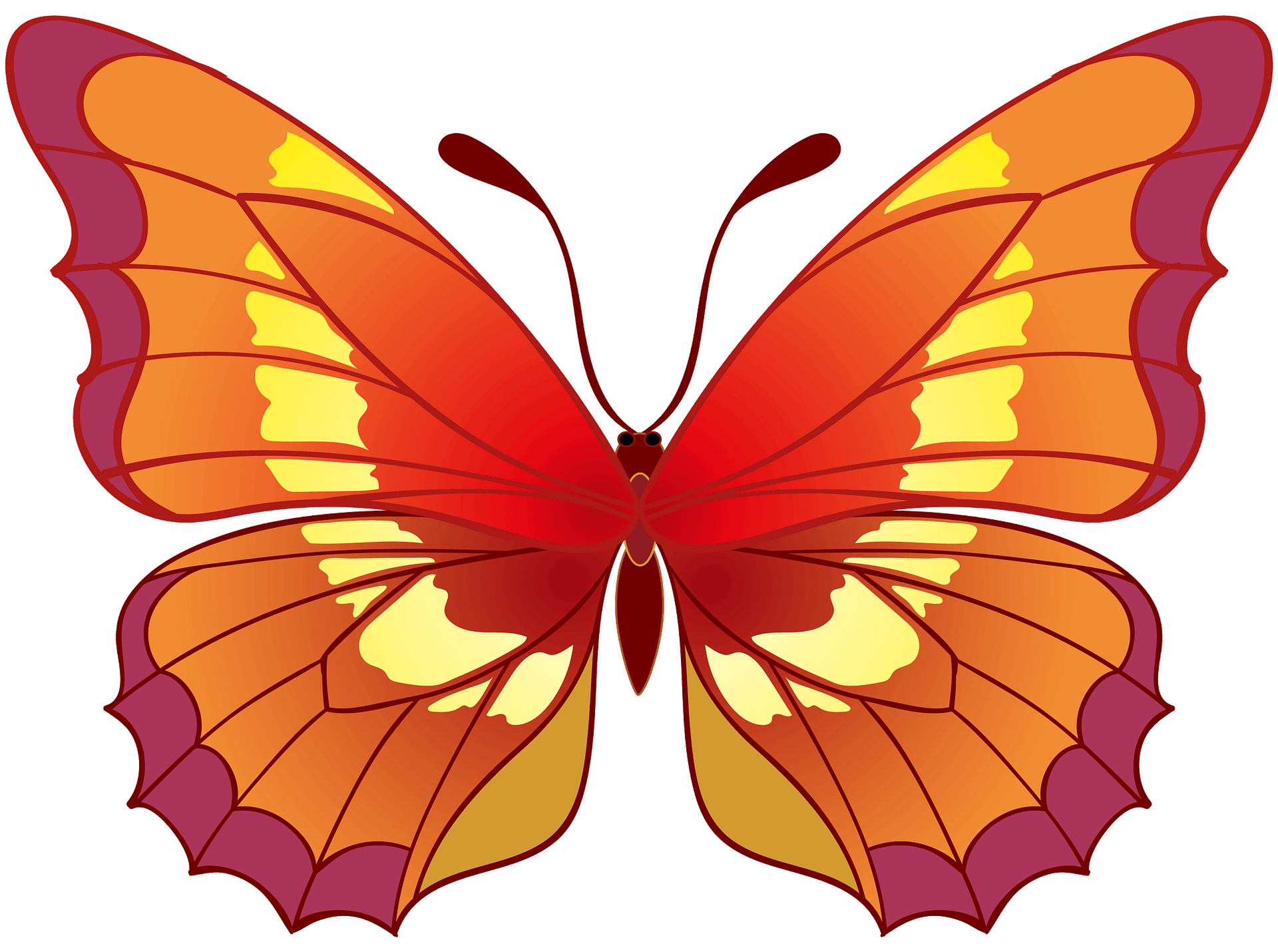 Butterfly Clipart Free Download Transparent Png Creazilla