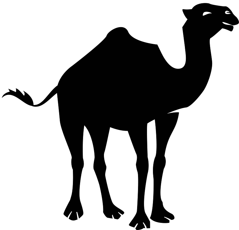 Free Camel Clipart - Clip Art Pictures - Graphics - Illustrations