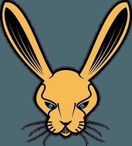 Rabbit head clipart