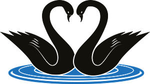 Swans clipart