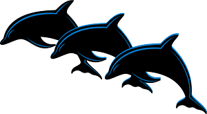 Three dolphins clipart