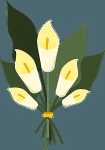 Bouquet of lilies clipart