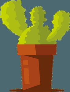 Cactus in pot clipart