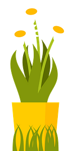 Pot of daisies clipart