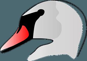 Swan Head clipart